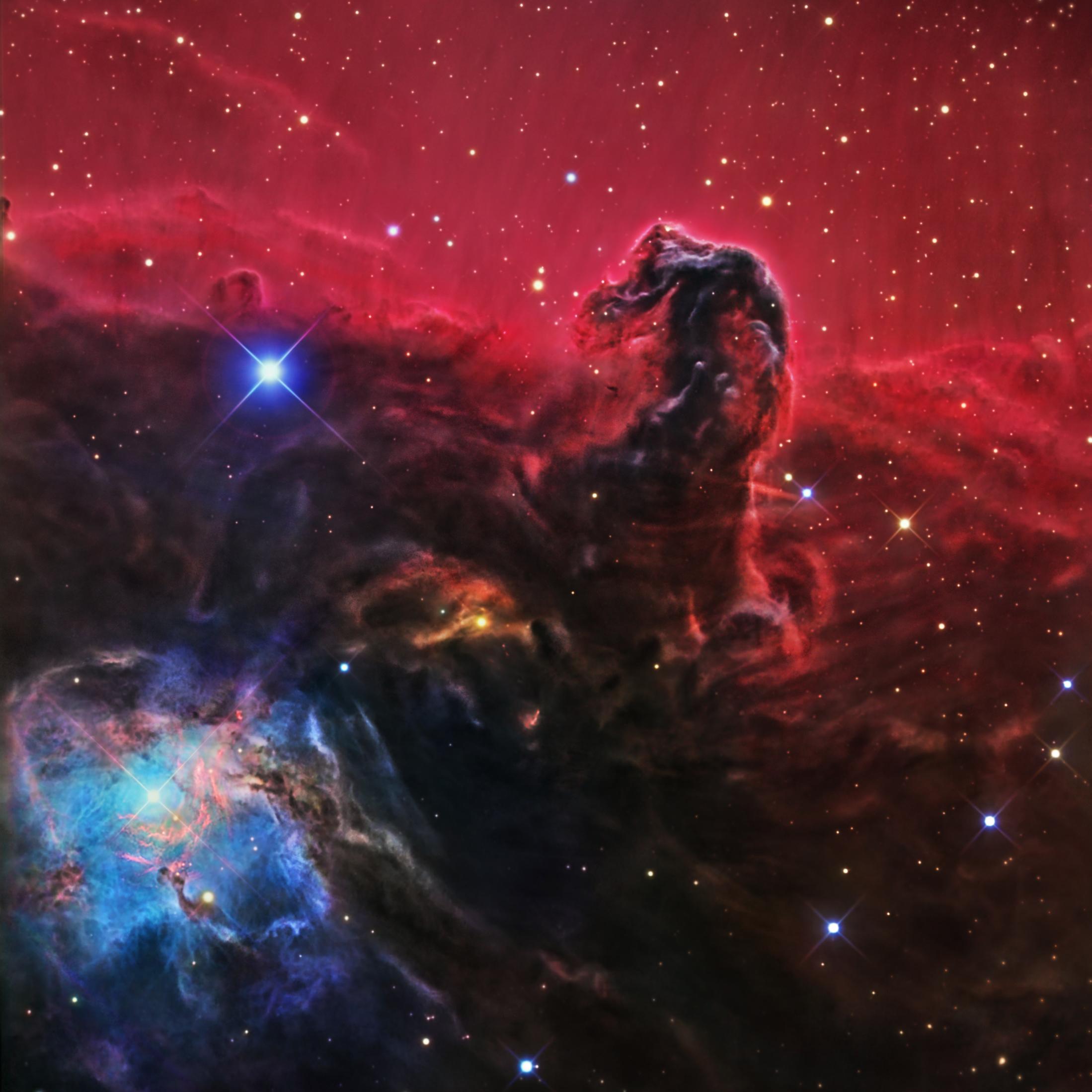 nebula in orion the horsehead nebula - photo #16
