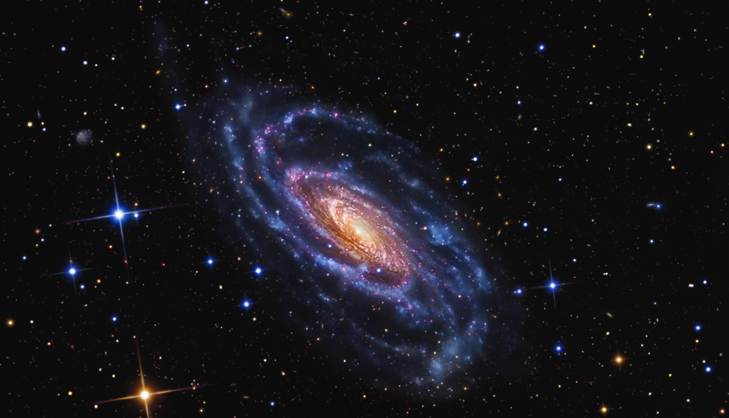 Supermassive black holes drive the evolution of galaxies