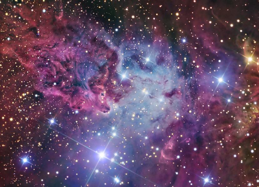 red fox fur nebula - photo #14